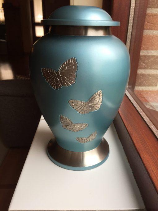 Goedkope urn vlinders