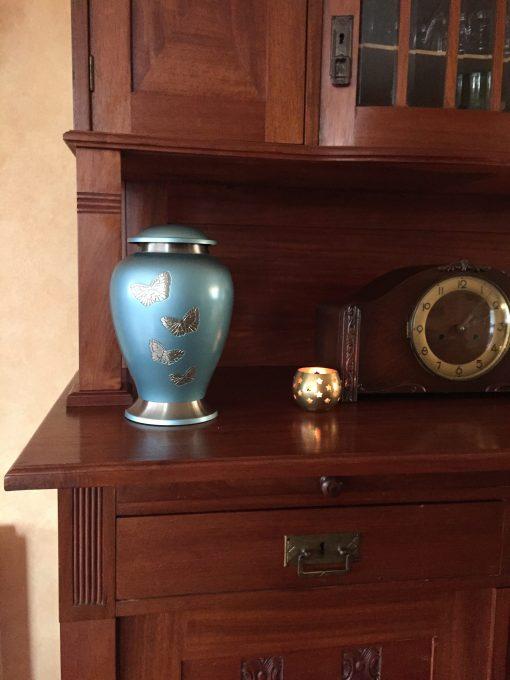 Goedkope urn vlinders thuis