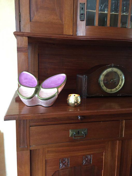 Vlinder met asbestemming thuis